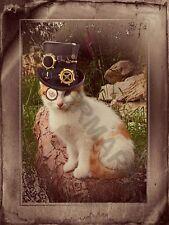 Ginger White Cat Steampunk Garden Vintage  Art Print Poster 12 x 16  HP4240