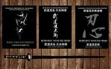 Budo Ryu Kai 2012 Taikai DVD Bundle Pack! - Ninja, Ninjutsu, Ninpo