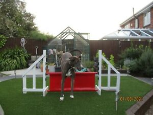 DOG AGILITY JUMP FILLER,  VARIOUS COLOURS, DOG TRAINING AID, H 38CM, W 85CM