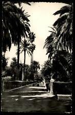 Sevilla Spanien Spain ~1960 Alcázar Jardines Garten Grünanlagen der Burg Palmen