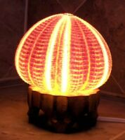 ENGLISH CHANNEL SEA URCHIN SHELL LAMP BEACH DECOR NAUTICAL 6' CORD ROTARY SWITCH