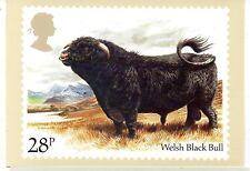 Gran Bretaña Ganado Bovino postal del año1984 (CY-233)