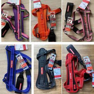 EZYDOG Chest Plate Harness includes Free car Restraint, Various Colours & Sizes