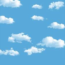 Blue Sky Cloud Vinyl Photography Backdrop Background Studio Props 8X8FT 5439