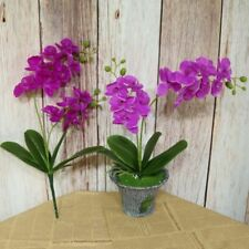 Artificial Phalaenopsis Flower Real Touch Latex Butterfly Orchid Home Decoration