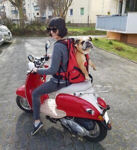 PREMIUM -patentierter Hunderucksack / Hundetasche / Hundetrage f. Hund bis 30kg