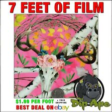 Hydrographic Film Pink Camo Hunter Girl Deer Skulls Hydro Dip Dipping 7 X 20