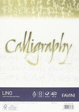 Pergamene per scrapbooking e hobby creativi con la carta