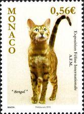 Monaco 2009 Cats International Cat Exhibition 2010 Pets 1v MNH**