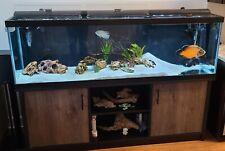 Aqueon 125 Gal Aquarium with stand, Fluval Fx 6 Filter, and fish.