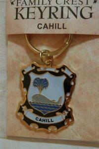 CAHILL Family KEYRING Coat of Arms - Heraldic Crest - Metal Key Chain