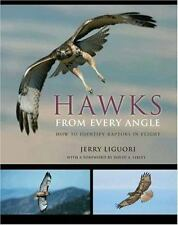 Hawks from Every Angle : How to Identify Raptors in Flight by Jerry Liguori...