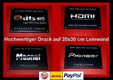 """DTS High Def. Audio/HDMI/MAGNAT/PIONEER"" -20x30 cm Logo Schild Kino Cinema Sign"