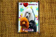 Poodle Gift Dog Fridge Magnet 77x51mm Birthday Gift