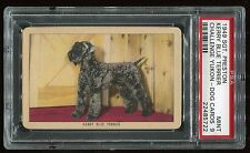 "1949 Sgt. Preston Yukon Dogs ""Kerry Blue Terrier"" Psa 9 Mint Cert #22485722"