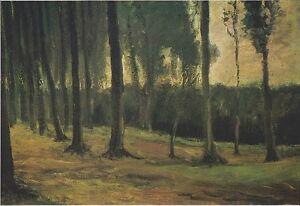 Vincent van Gogh Forest-edge Giclee Canvas Print