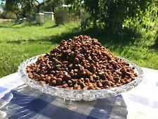Frisch Bienenbrot, Perga, fermentierter Blütenpollen, 1 kg.