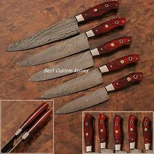 BC-Knives-Custom Handmade Damascus Steel Splendid Kitchen Set Knives Lots of 5