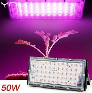 Full Spectrum LED Grow Light PhytoLamp For Phyto Plants Tent Flower Seeding 50W