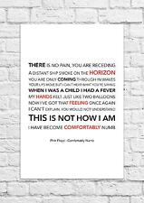 Pink Floyd - Comfortably Numb - Song Lyric Art Poster - A4 Size