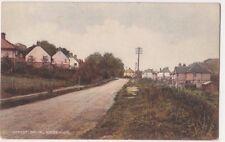 Forest Drive Kingswood, Surrey Postcard B742
