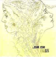 ANGE & RIS (Ange&Ris) Not Me CD Top Rock/Pop/Ambient duo – Private Press HEAR