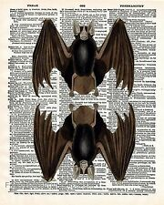 Victorian Bat Art Print 8 x 10 - Dictionary Page - Goth Horror - Gothic Animals