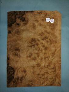 CONSECUTIVE SHEETS OF AMERICAN BURR WALNUT VENEER 23 X 34 cm AM#248 DASHBOARD,