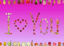 Lentikular -Wackelkarte: Aufblühende Rosen und Rosen - Inschrift: I love you