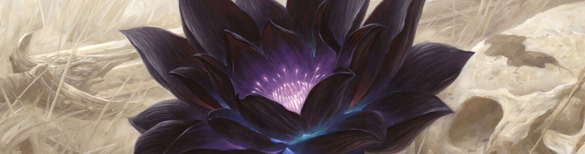 Bid on the most coveted MTG cards on these auctions ending soon.
