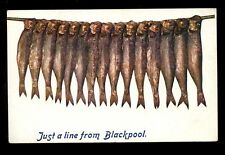 Lancs Just a Line From Blackpool Fish Tuck Oilette #9373 1908 PPC