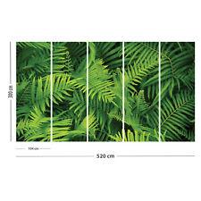 -SONDERANFERTIGUNG-Vlies-Fototapete Fototapeten Tapete aus Vlies Grün 520x300 cm