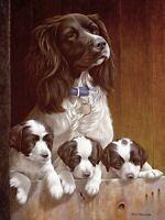 Nigel Hemming ALL ABOVE BOARD Springer Spaniels, Art Canine Ltd Edition  #1