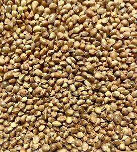 4 Pounds Whole Hemp Seeds Nuts Organic Free Shipping