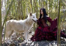 Renaissance Fair Medieval Fairy Tale HALLOWEEN Wolf 2pc Costume Game of Thrones