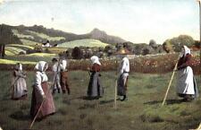 V22.Vintage Postcard.Group of Gardeners?