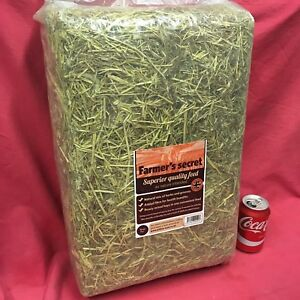 MIXED 2KG Timothy Hay Alfalfa Herbs Meadow Hay Grass High Fibre HEALTH BOOSTER