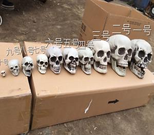 10Pcs/Lot Plastic Human Skulls Decoration Skeleton Head Halloween Prop Decor New