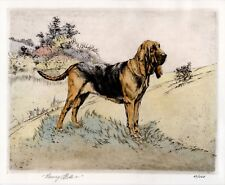 More details for bloodhound dog limited edition art print engraving - by the late henry wilkinson