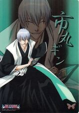 Bleach Clear Plate Trading Card Jumbo Carddass Visual Collection Gin Ichimaru