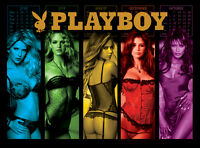 Playboy Pinball Alternate Translite (3 versions)