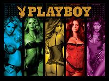 Playboy Pinball Alternate Translite (3 versions)