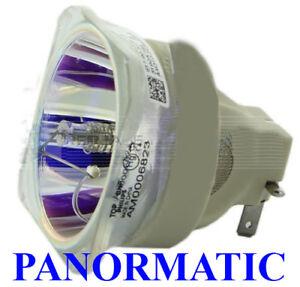 Projector Lamp Optoma EH500 EH501 HD36 HD151X W501 X501 X600 DH1017 VDHDSL W6101