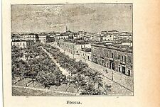 Stampa antica FOGGIA minuscola veduta 1905 Old print