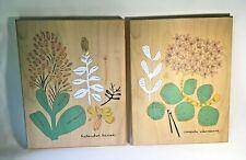 Leah Duncan Wooden Botanical Art Prints Set Target Exclusive Limited Edition