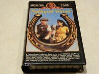 National Velvet VHS [Starring Elizabeth Taylor & Mickey Rooney]