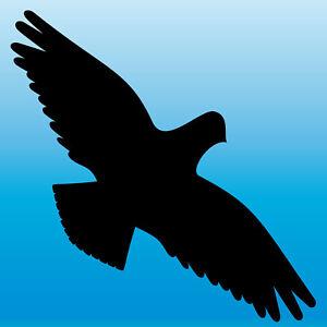 Warnvogel Aufkleber 30cm schwarz Habicht Vogel Schreck Fenster Schutz Deko Folie