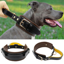 Genuine Leather Control Collar with Handle Adjustable for Large Breeds Pitbull