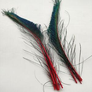 Wholesale Pretty 10-100pcs Natural Peacock Feathers 30-35cm/12-14inch 10 Colours