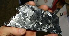 BEAUTIFUL 370 GM CAMPO DEL CIELO ETCHED METEORITE SLAB!! .8 POUNDS